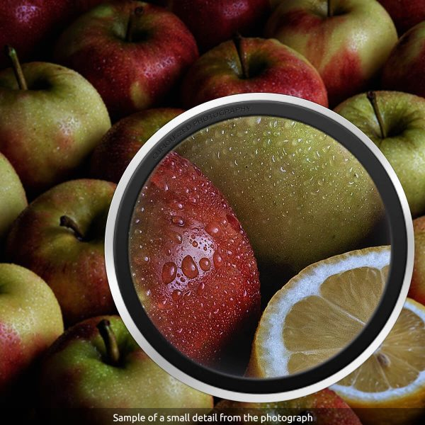 Lemon - Detailed section of the photograph-CuriousZed / Zed Sindelar