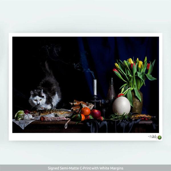 Aspero-C-Print-with-COA-CuriousZed / Zdenek Sindelar
